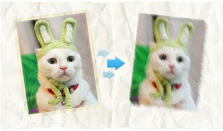 Fur photo effect - free photo editing